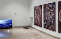 imagen de la sala de exposiciones 927 donde se puede ver parte de la exposición de Cecilia Vicuña Minga del Cielo Oscuro