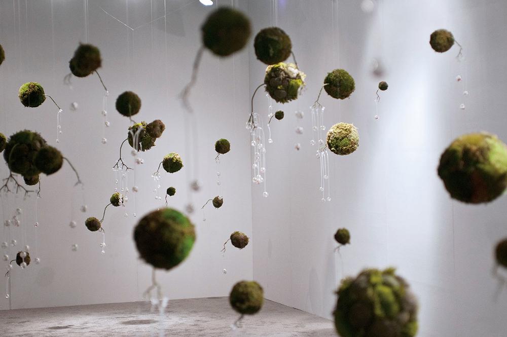 Instalación de kokedamas en Phantom Galleries de Meeson Pae Yang, Dispersion, 2007- 2008
